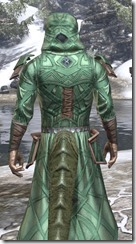 Ancient Orc Homespun - Argonian Male Robe Close Rear