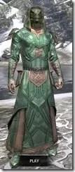 Ancient-Orc-Homespun-Argonian-Male-Robe-Front_thumb.jpg