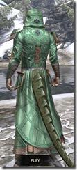 Ancient Orc Homespun - Argonian Male Robe Rear