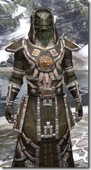 Argonian Cotton - Argonian Male Robe Close Front