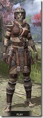 Argonian Hide - Khajiit Female Front