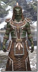 Argonian Homespun - Argonian Male Robe Close Front