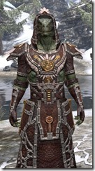Argonian Spidersilk - Argonian Male Robe Close Front