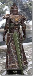 Argonian Spidersilk - Argonian Male Robe Rear