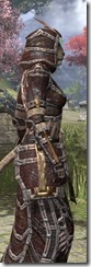Argonian Spidersilk - Khajiit Female Robe Close Side