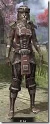 Argonian-Steel-Khajiit-Female-Front_thumb.jpg