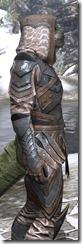 Assassins League Iron - Argonian Male Close Side