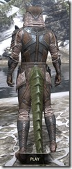 Assassins League Iron - Argonian Male Rear