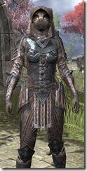 Assassins League Iron - Khajiit Female Close Front