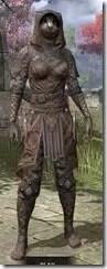 Assassins-League-Rawhide-Khajiit-Female-Front_thumb.jpg