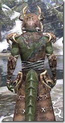 Barbaric Homespun - Argonian Male Robe Close Rear