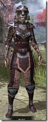 Breton-Full-Leather-Khajiit-Female-Front_thumb.jpg