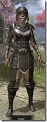 Breton-Leather-Khajiit-Female-Front_thumb.jpg