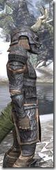 Celestial Iron - Argonian Male Close Side