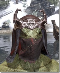 Coldsnap-Medium-Helmet-Argonian-Male-Front_thumb.jpg