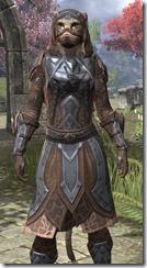 Dark Brotherhood Iron - Khajiit Female Close Front