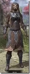 Dark Brotherhood Iron - Khajiit Female Front