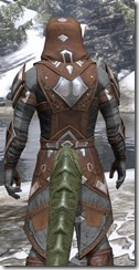 Dark Brotherhood Rawhide - Argonian Male Close Rear