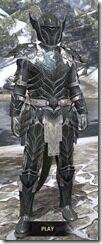Ebony-Iron-Argonian-Male-Front_thumb.jpg