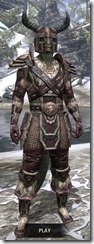 Nord-Full-Leather-Argonian-Male-Front_thumb.jpg