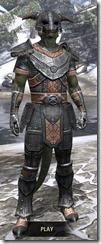 Nord-Steel-Argonian-Male-Front_thumb.jpg