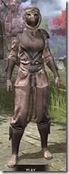 Redguard-Hide-Khajiit-Female-Front_thumb.jpg