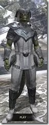 Redguard-Iron-Argonian-Male-Front_thumb.jpg