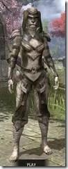 Wood-Elf-Leather-Khajiit-Female-Front_thumb.jpg