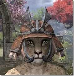 Akaviri-Rawhide-Helmet-Khajiit-Female-Front_thumb.jpg