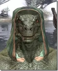 Ancient-Orc-Homespun-Hat-Argonian-Male-Front_thumb.jpg