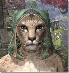 Ancient-Orc-Homespun-Hat-Khajiit-Female-Front_thumb.jpg