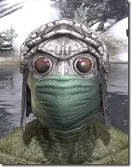 Ashlander-Homespun-Hat-Argonian-Male-Front_thumb.jpg