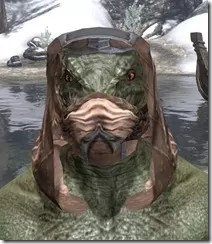 Dark-Brotherhood-Iron-Helm-Argonian-Male-Front_thumb.jpg
