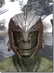 Ancient-Elf-Rawhide-Helmet-Argonian-Male-Front_thumb.jpg