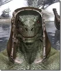 Argonian-Hat-2-Argonian-Male-Front_thumb.jpg