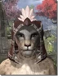 Argonian-Hat-3-Khajiit-Female-Front_thumb.jpg