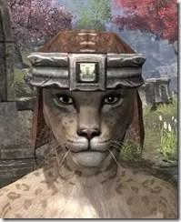 Argonian-Helm-1-Khajiit-Female-Front_thumb.jpg