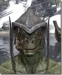 Dark-Elf-Helm-1-Argonian-Male-Front_thumb.jpg