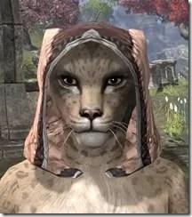 High-Elf-Hat-3-Khajiit-Female-Front_thumb.jpg