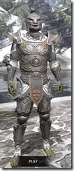 Anequina-Iron-Argonian-Male-Front_thumb.jpg