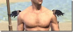 Glenmoril-Wyrd-Epaulets-Male-Front_thumb.jpg