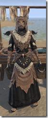 Glenmoril-Wyrd-Khajiit-Female-Robe-Front_thumb.jpg