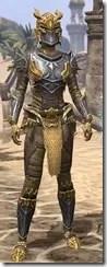 Ancient-Dragon-Hunter-Female-Front_thumb.jpg