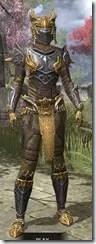 Ancient-Dragon-Hunter-Khajiit-Female-Front_thumb.jpg