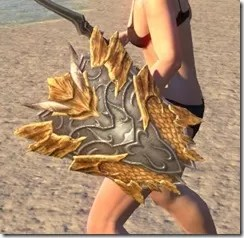 Ancient-Dragon-Hunter-Shield-2_thumb.jpg