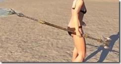 Ancient Dragon Hunter Staff 2