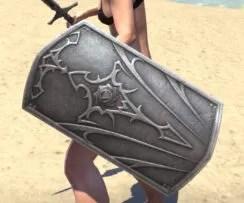 Knight of the Circle Shield 2