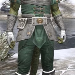 Shield of Senchal Homespun - Argonian Male Shirt Front