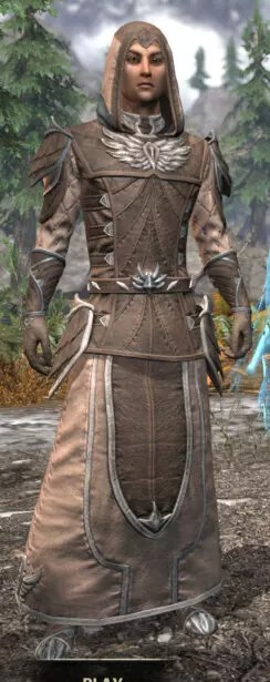 Ancestral High Elf Homespun - Male Robe Front