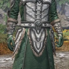 Ancestral Orc Homespun - Argonian Male Robe Front